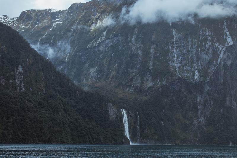 Things To Remember When Heading To Milford Sound - Milford cruise in car show