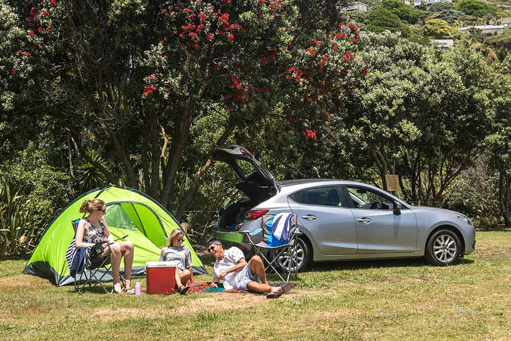 Hiring A Car In New Zealand What You Need To Know Jucy Rentals