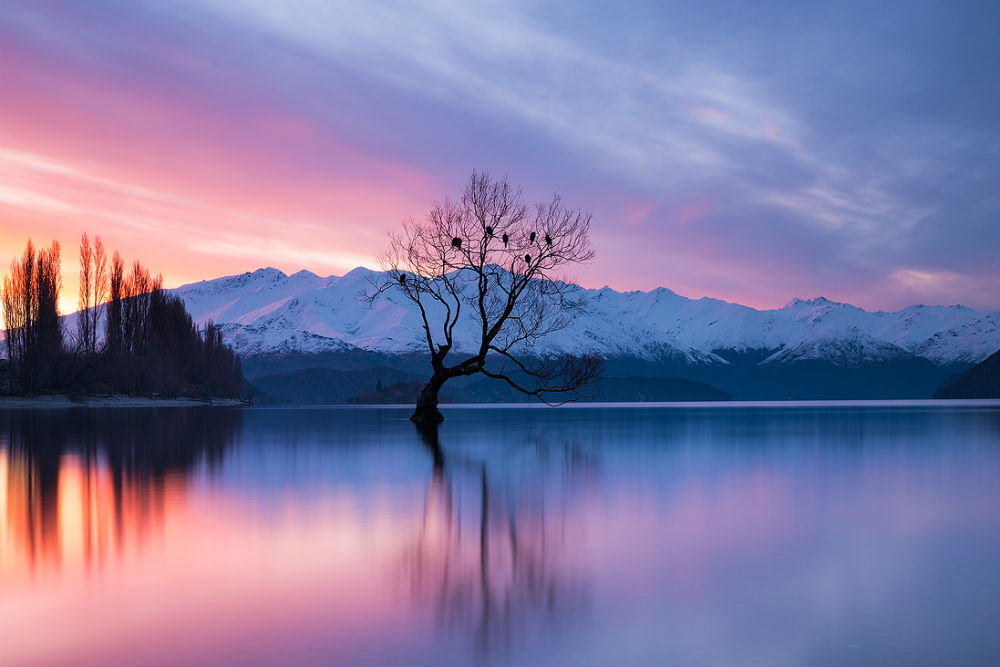 8 Seater Vehicles >> Four Day Wanaka Itinerary | JUCY Rentals